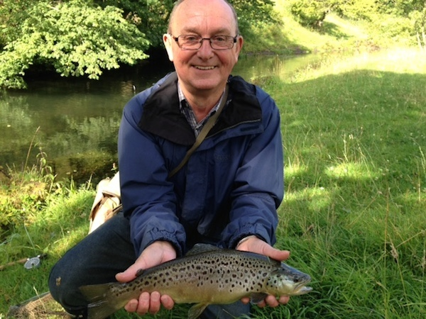 sight fishing river brown trout
